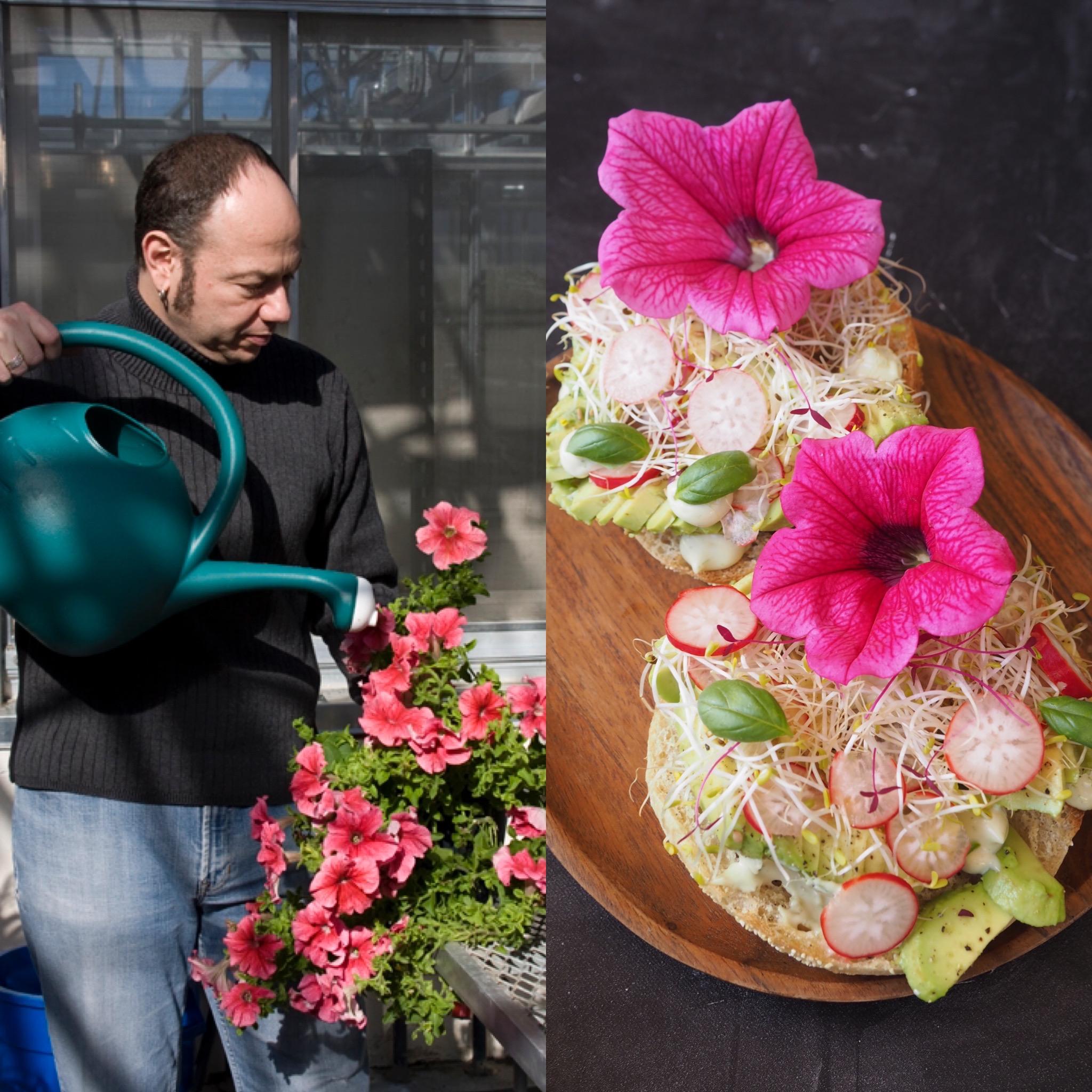 Eduardo Kac, Eduina y la tostada de aguacate con flores comestibles (ESP)